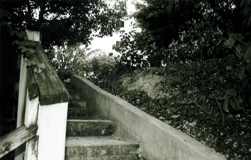 stairs-bw.png
